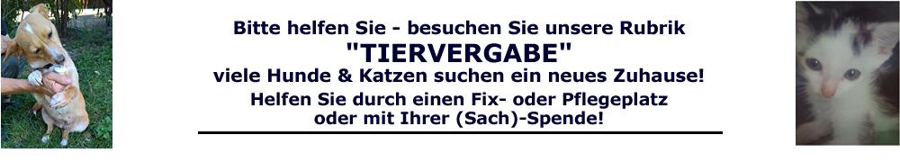 slider_img2
